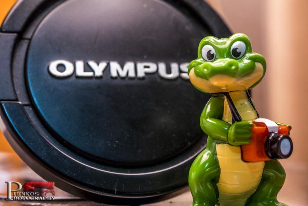 Szkolenie i Plener z Olympusem 2014